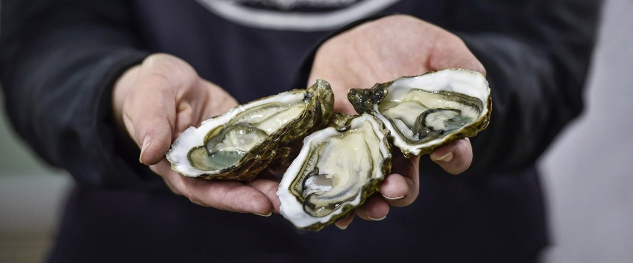 Voilah - so france - oysters - web