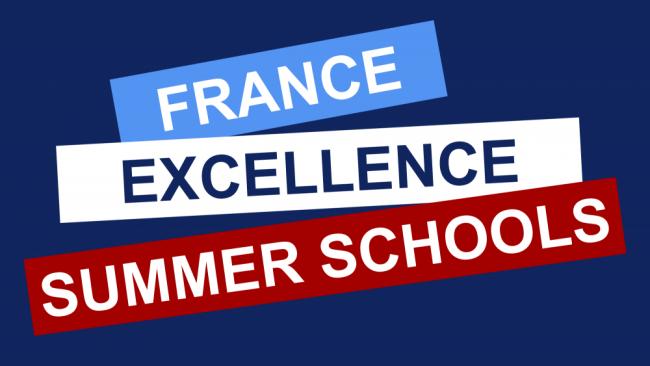 Fex Summer Schools